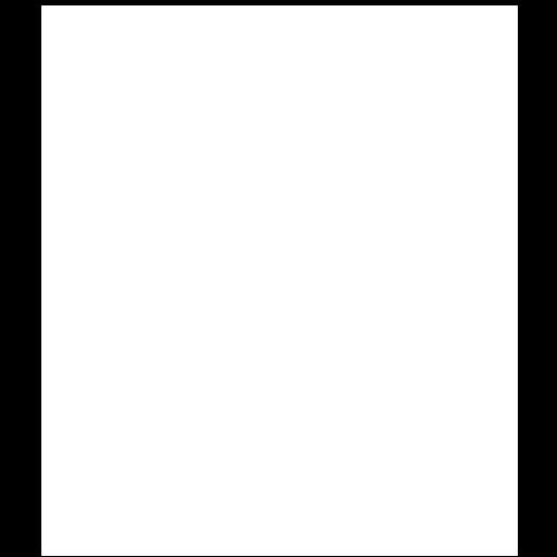 logo solo lion white